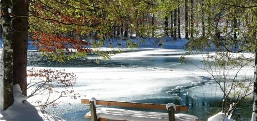 تدبیر زمستان در طب سنتی