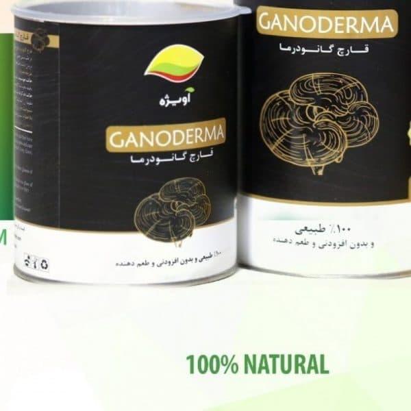 قارچ گانودرما 90گرم
