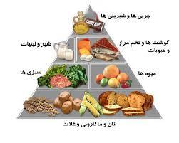 تاثیر مواد غذائی بر بدن